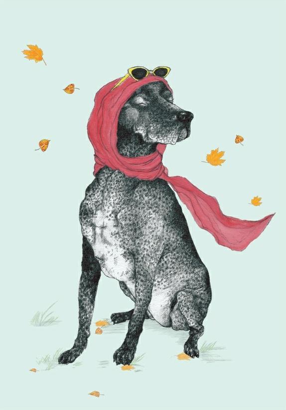 A4 plakat «Luksusdyret III» - Norge - Luksusdyret III Plakat med illustrasjon trykket på matt papir, 170g uten struktur.FInnes 30 signerte opplag. Str. A4 /21X 29cm. Takk for titten! Se gjerne innom Marit Gunnes Design på facebook også! :) Hund - Luksusdyret - vind- solnyter- høst - Norge