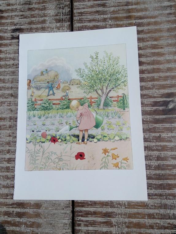 sommer Elsa Beskow - Norge - 22,6 x 30,8 cm(selve bildet 18,7 x 22,9)fra bokskrift/ bilde på baksiden - Norge