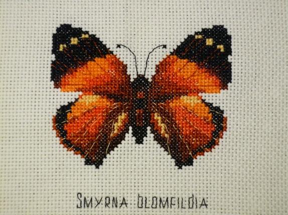 sommerfuglen broderi